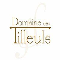logo-H-et-Domaine-des-tilleuls.jpg